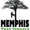Tree Service work in Memphis