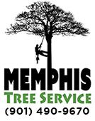 Tree Service Memphis Logo